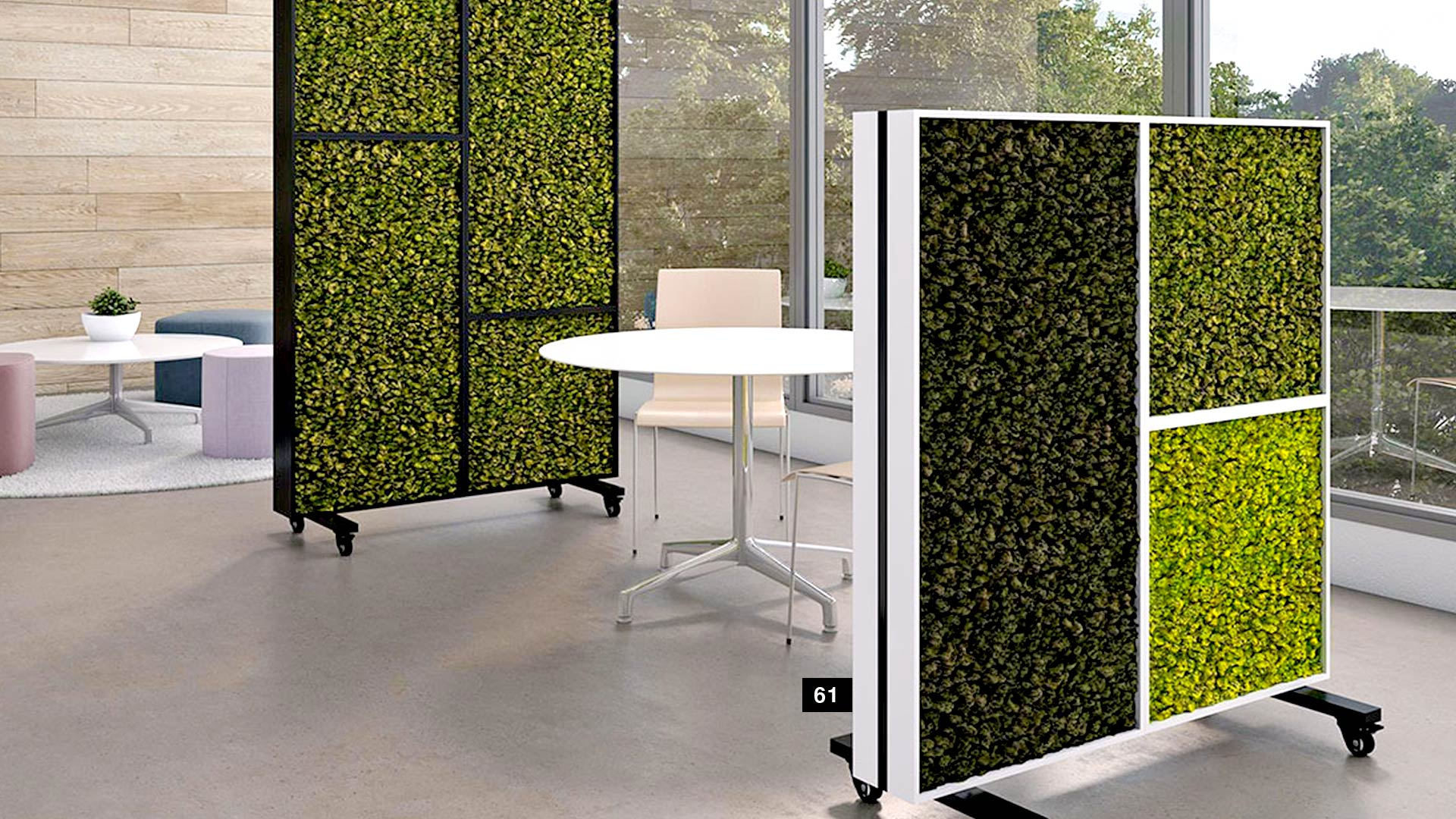 social-distancing-office-nevins-bio-wall
